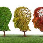 بیماری آلزایمر و روش های پیش گیری از آن