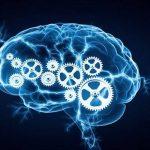روش های بهبود حافظه با خوردن خوراکی ها