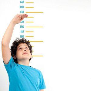 رشد قد | چگونه رشد قد فرزندانمان را محاسبه کنیم؟نکاتی برای افزایش قد
