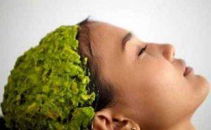 برگ کاری برای مو / مزایای استفاده از برگ های کاری برای مو
