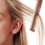 درمان شپش سر / نحوه استفاده از روغن زیتون برای کشتن شپش سر