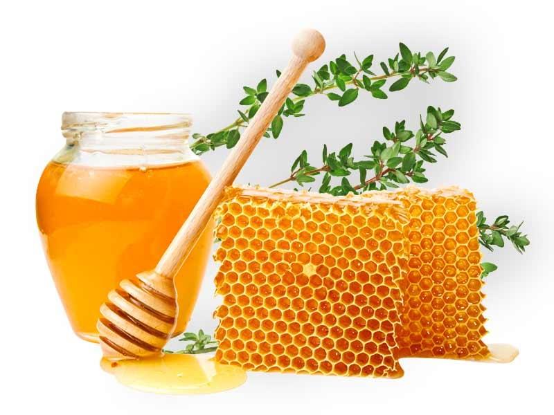 عسل برای آسم