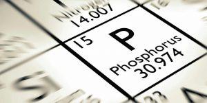 فسفر | آشنایی با منابع غذایی فسفر و فواید فسفر برای بدن