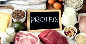 پروتئین | منابع غنی از پروتئین-کدام مواد غذایی سرشار از پروتئین هستند؟