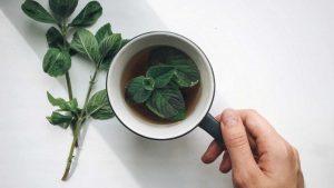 خواص چای نعناع / مزایای بهداشت و زیبایی شگفت انگیز در نوشیدن چای نعناع