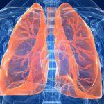 درمان مشکلات تنفسی با استفاده از گیاهان دارویی + روش مصرف