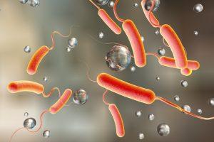 بیماری وبا چیست ؟ آشنایی با علل ، علایم و درمان های بیماری وبا