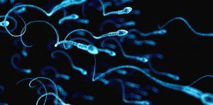 معرفی ویتامین هایی که باعث افزایش تعداد اسپرم می شوند .