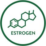همه چیزهایی که باید در مورد استروژن بدانید.