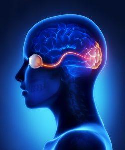 نوریت نوری چیست ؟ علائم، علل و تشخیص + نکاتی برای جلوگیری